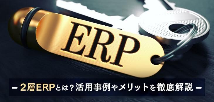 2層ERPとは?導入のメリットや実際の活用事例について解説