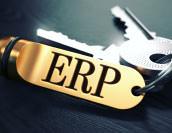 2層ERPとは?活用事例やメリットを徹底解説