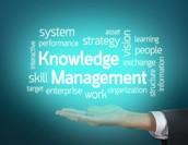 ナレッジマネジメントとは?基礎を詳しく解説