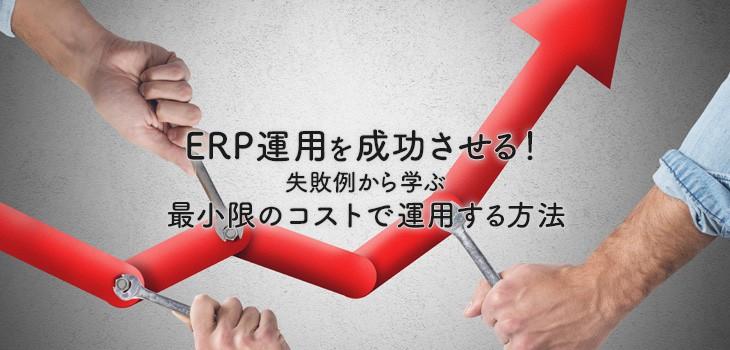 ERP運用を成功させる!失敗例から学ぶ最小限のコストで運用する方法