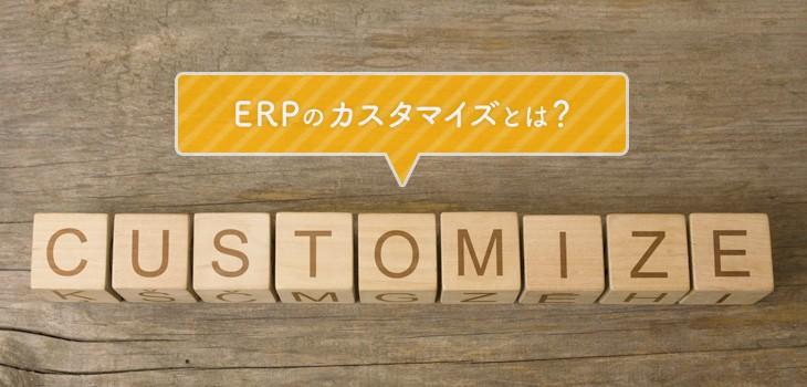 ERPのカスタマイズとは?費用や失敗する原因について詳しく解説