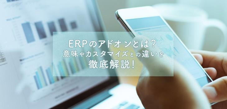 ERPのアドオンとは?意味やカスタマイズとの違いを徹底解説!
