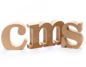 CMSにおける要件定義とは?よくある失敗例もご紹介!