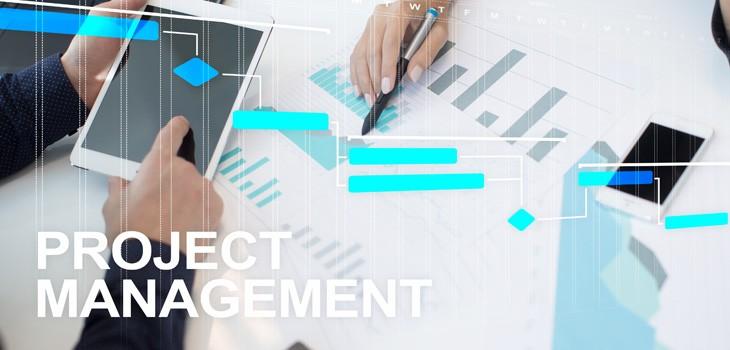 プロジェクト管理の体制とは?PMとPLの違いをわかりやすく解説