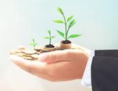 補助対象額UP!2019年度IT導入補助金の変更点と申請方法を解説