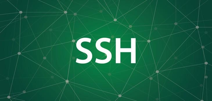 安全性が高い「SSH」とは?認証方式や使い方をわかりやすく解説!