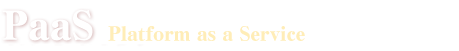 「PaaS」の資料請求ランキング
