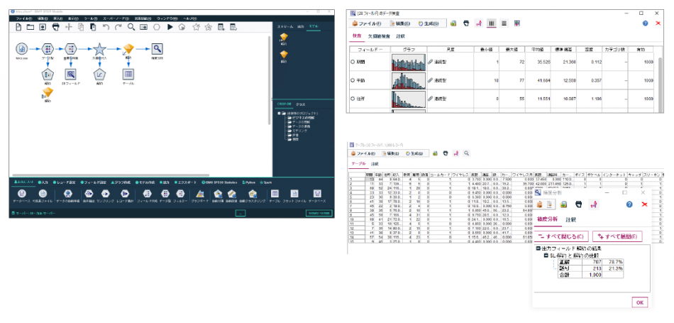 IBM SPSS Modeler Professional製品詳細2