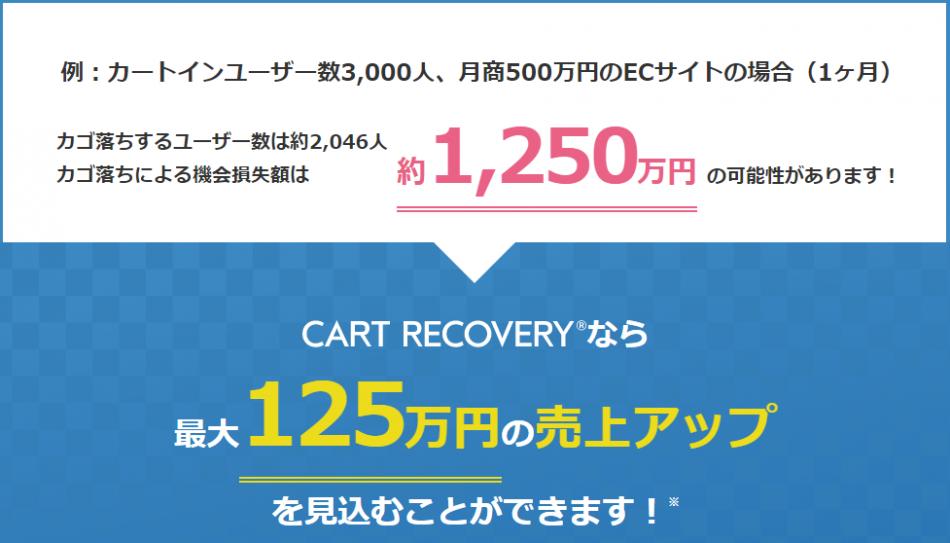 【ECサイト向け】カゴ落ち対策ツール 「カートリカバリー」製品詳細2