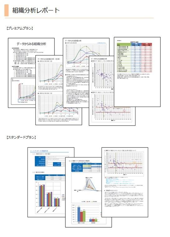 当社独自の組織分析!課題解決に向けたトータルのサポートが可能です製品詳細2