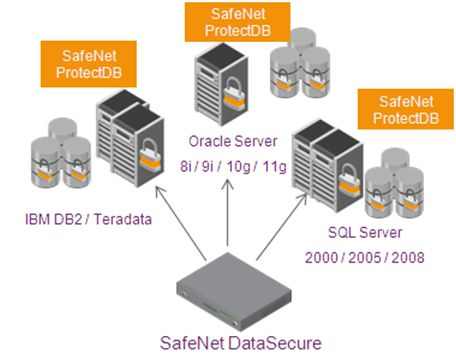 SafeNet ProtectDB製品詳細3