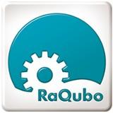 RaQubo