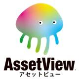 AssetView