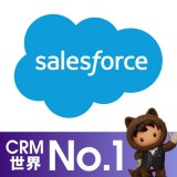 Salesforce Platformのロゴ画像
