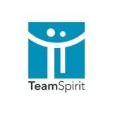 「TeamSpirit」