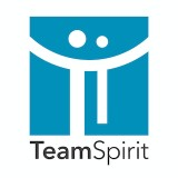 「TeamSpirit」