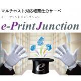 e-PrintJunction