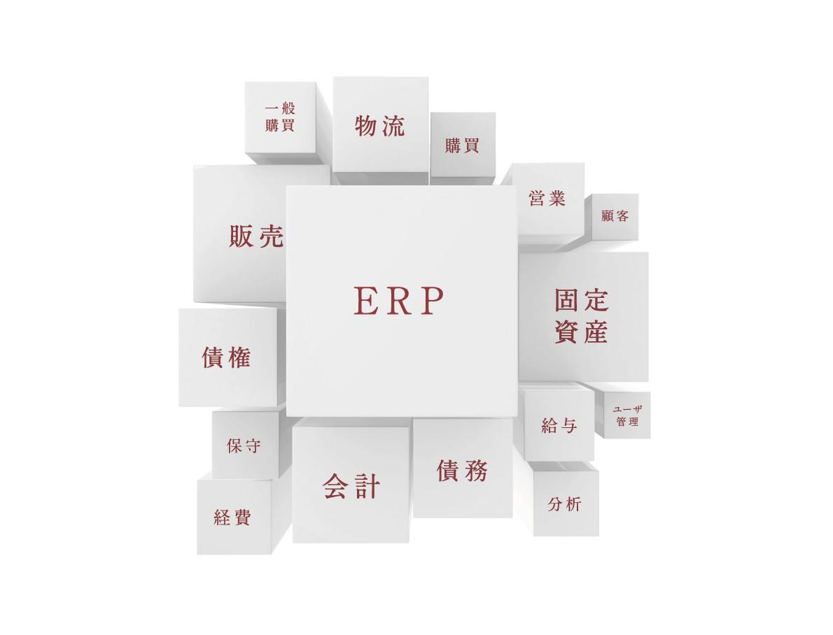輸出入業務、海外進出企業に強い会計システム