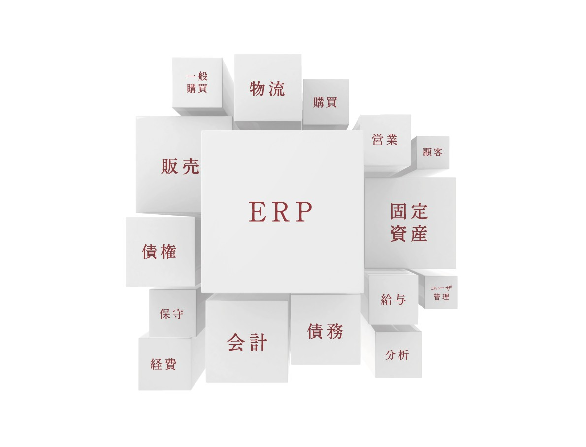 統合システムで中堅中小企業の業務負担を軽減