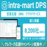 intra-martDPS for Sales